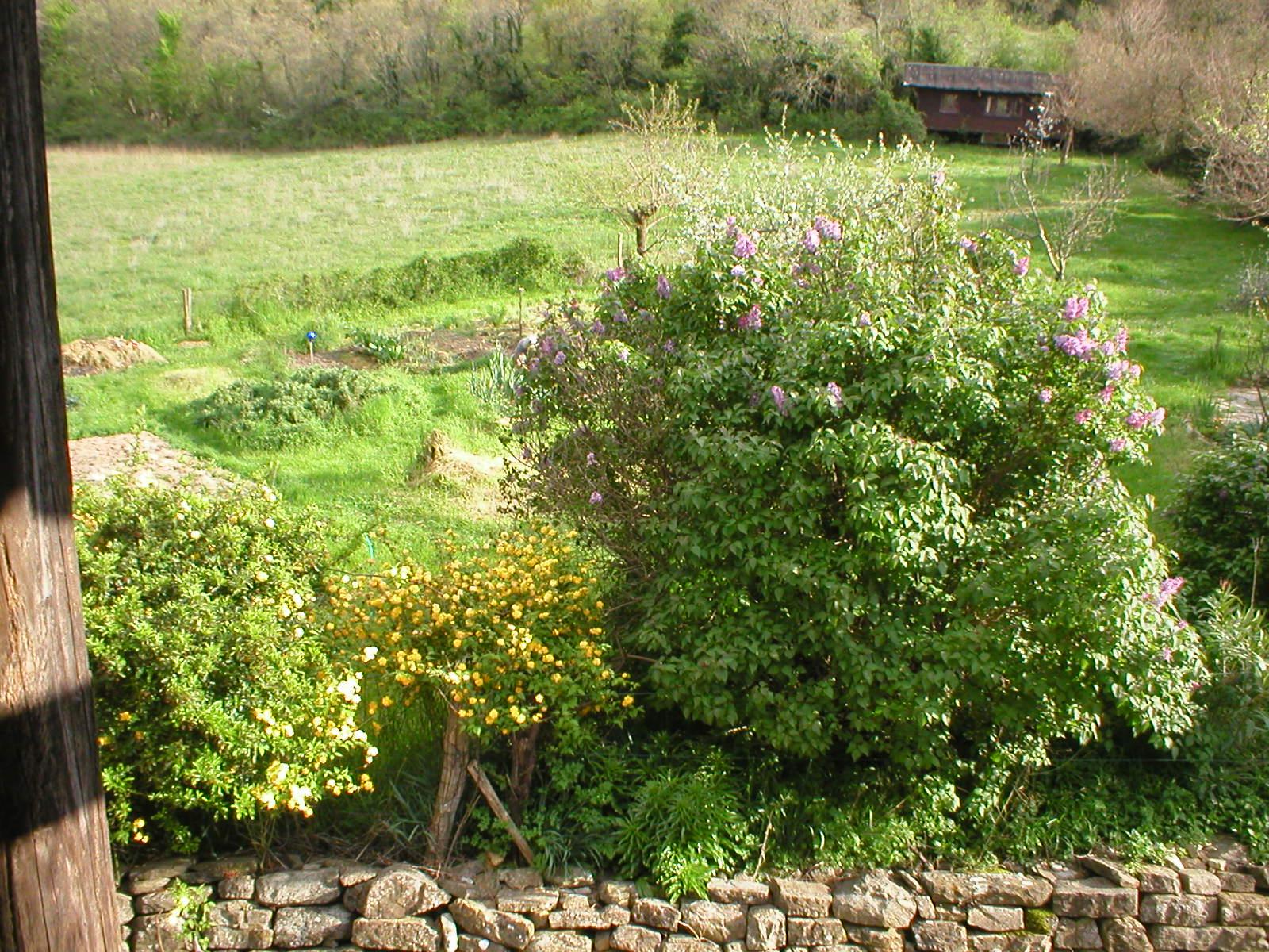 Feld und Garten